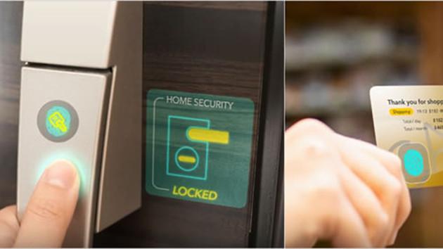 Japan Display: JDI entwickelt transparenten Fingerabdrucksensor