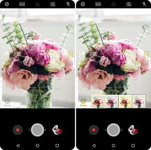 LG Vision AI erkennt Blumen