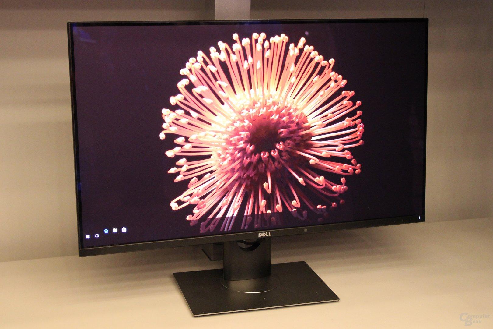 Dell UltraSharp UP3017Q als einsamer OLED-Monitor