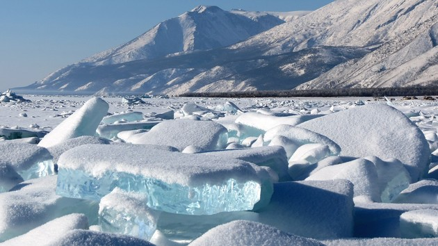 Intel Gen11 Graphics: Ice Lake mit 60 Prozent mehr EUs als Cannon Lake GT2