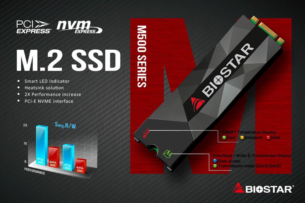Biostar M500 SSD mit Kühler