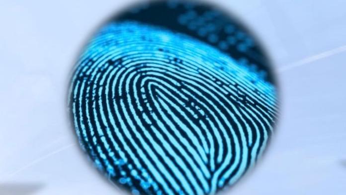 Fingerabdrucksensor: Netz aus Nanofasern misst Temperatur und Druck