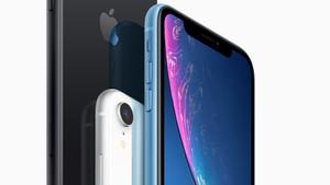 iPhone Xr: Günstiges Apple-Smartphone kann vorbestellt werden