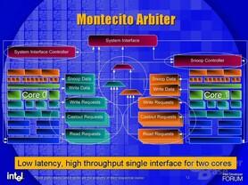 Montecito Arbiter
