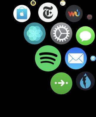Spotify-App für die Apple Watch