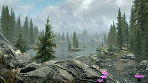Skyrim Together: Multiplayer-Mod für Bethesda-RPG bald als Beta