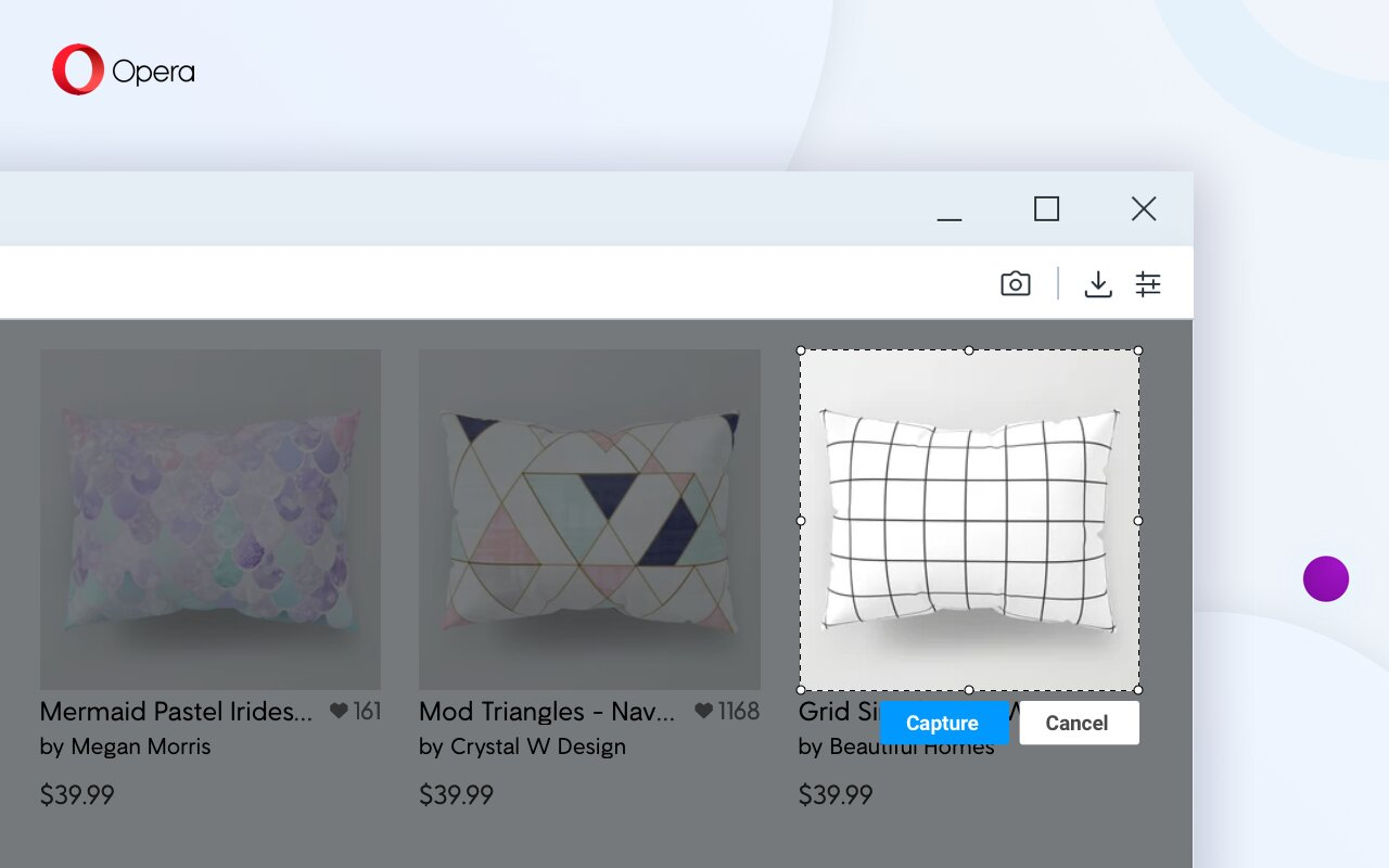 Screenshot-Tools des Opera R3