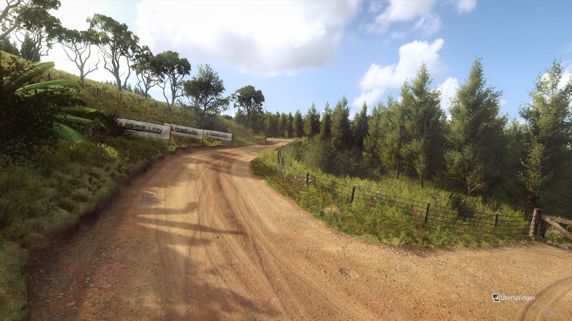 Dirt Rally 2.0 im Technik-Test