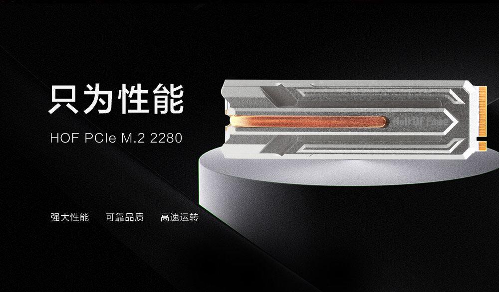 HOF PCIe M.2 SSD mit Heatpipe