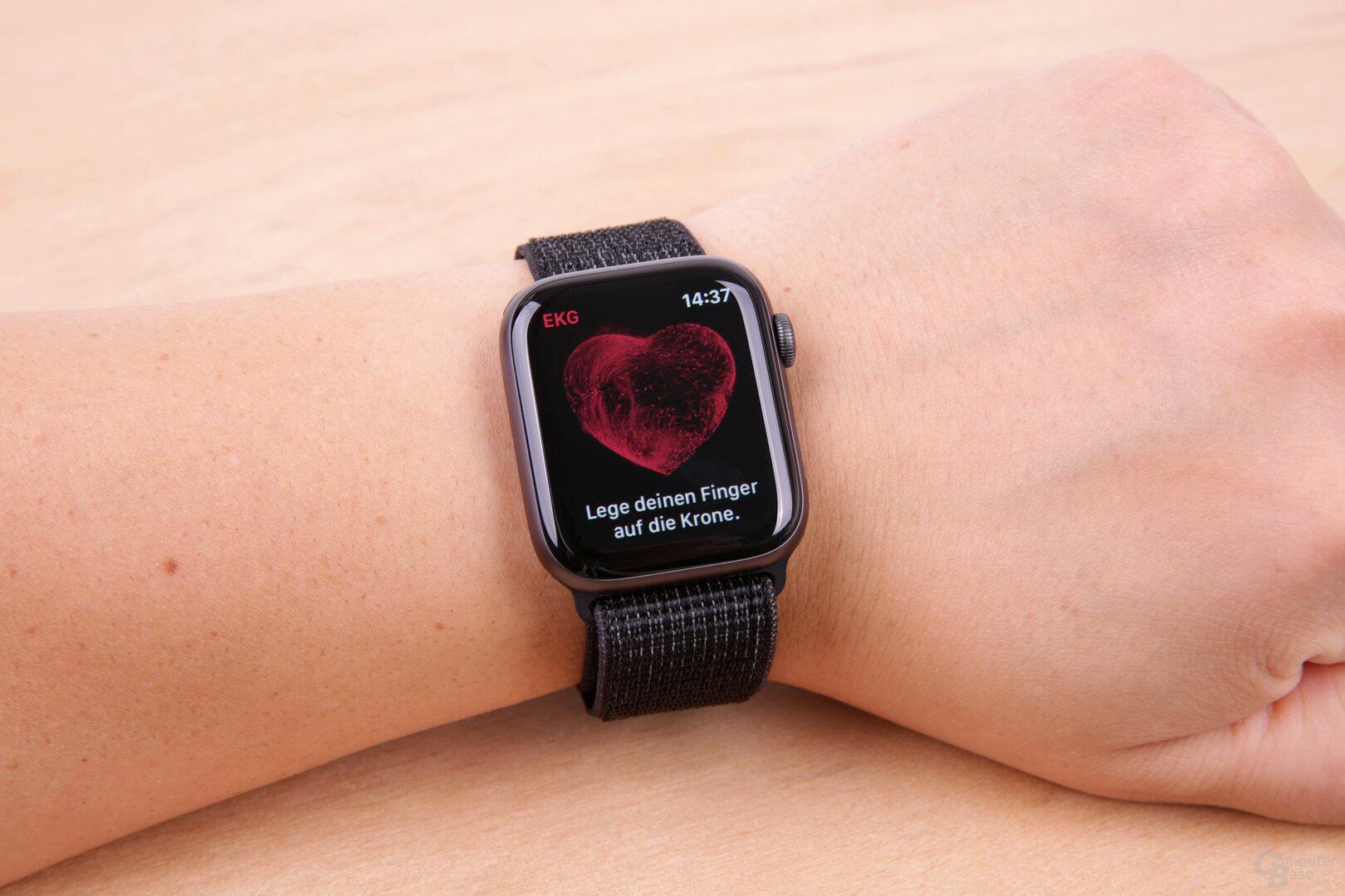 EKG-App kurz nach dem Start mit Hinweis zur Nutzung