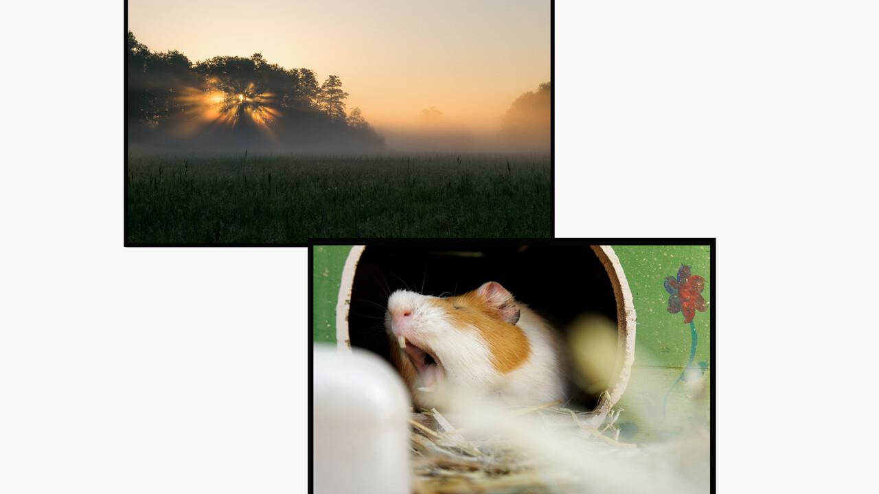 "Community: Fotowettbewerb zum Thema ""Klimawandel"""