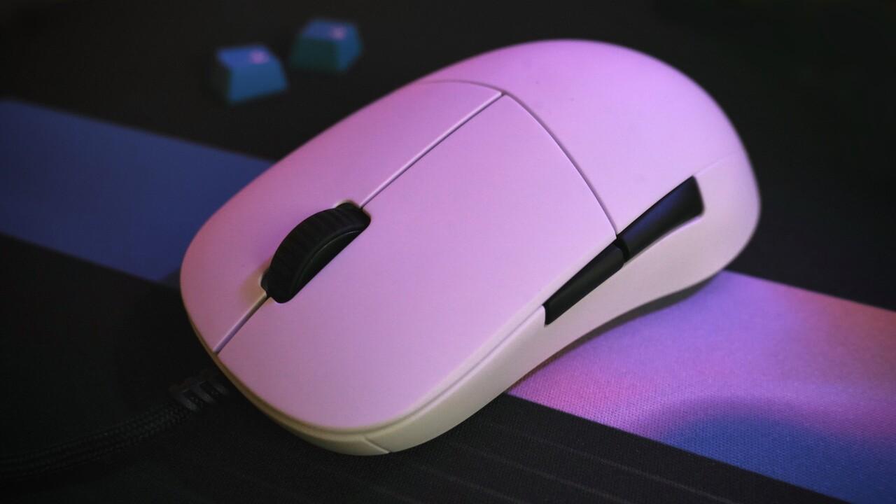Endgame Gear XM1 im Test: Pro-Gaming-Maus kann nicht viel, das aber sehr gut