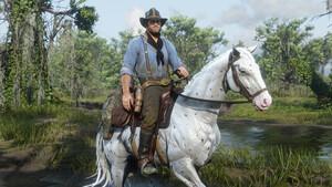 Systemanforderungen: Red Dead Redemption 2 macht sich auf der HDD breit
