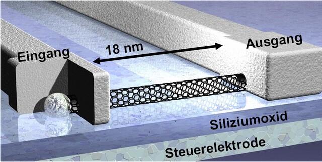 Der kleinste Carbon-Nano-Feldeffekt-Transistor (Schaubild)