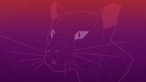 """Ubuntu 20.04 """"Focal Fossa"""": Auch Kubuntu und Lubuntu stehen zum Betatest bereit"""