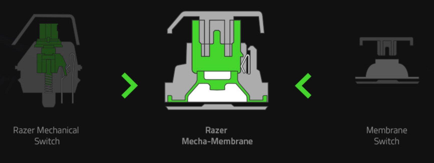 Querschnitt des Razer Mech-Membran-Tasters