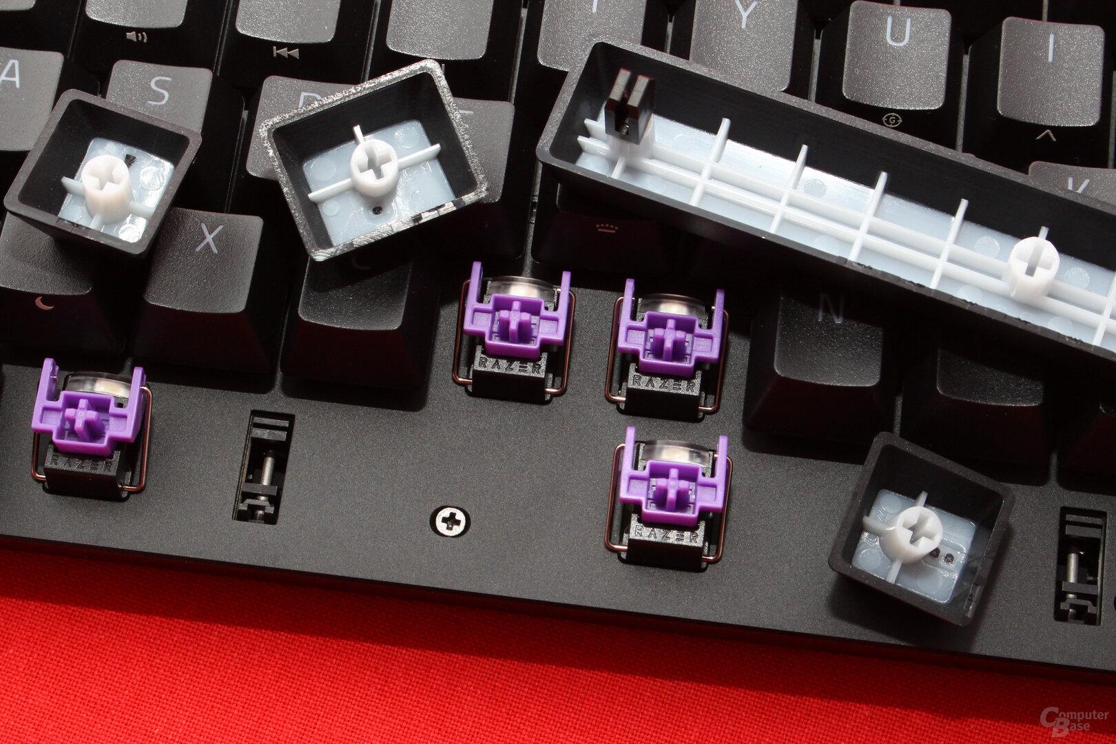 """Razers """"Opto-Mechanical Purple"""" klicken vernehmlich"""