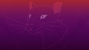 Ubuntu 20.04.1 LTS: Produktpflege für alle Geschmacksrichtungen