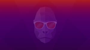 Groovy Gorilla: Canonical veröffentlicht Ubuntu 20.10 und Derivate