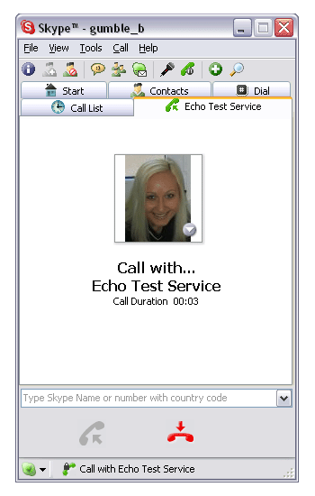 Telefongespräch per Skype