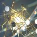 Nvidia: GTC 2021 findet virtuell im April statt