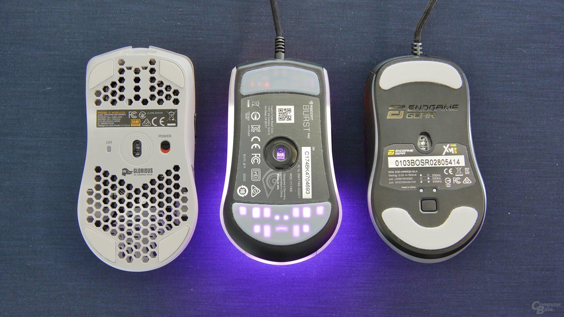 Glorious Model O Wireless, Roccat Burst Pro & Endgame Gear XM1