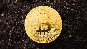"""Kryptowährung: Großbritannien prüft den """"Britcoin"""" als Zahlungsmittel"""