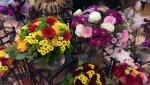 IMAG0364-oryg.jpg