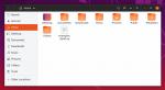ubuntu1904-nautilus.png