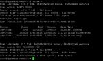 Debian fdisk.PNG
