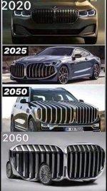 BMW niere.jpg
