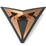 MasterPase