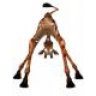 Giraffenlippe