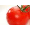 Rote_Tomate