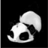 PandaZockt